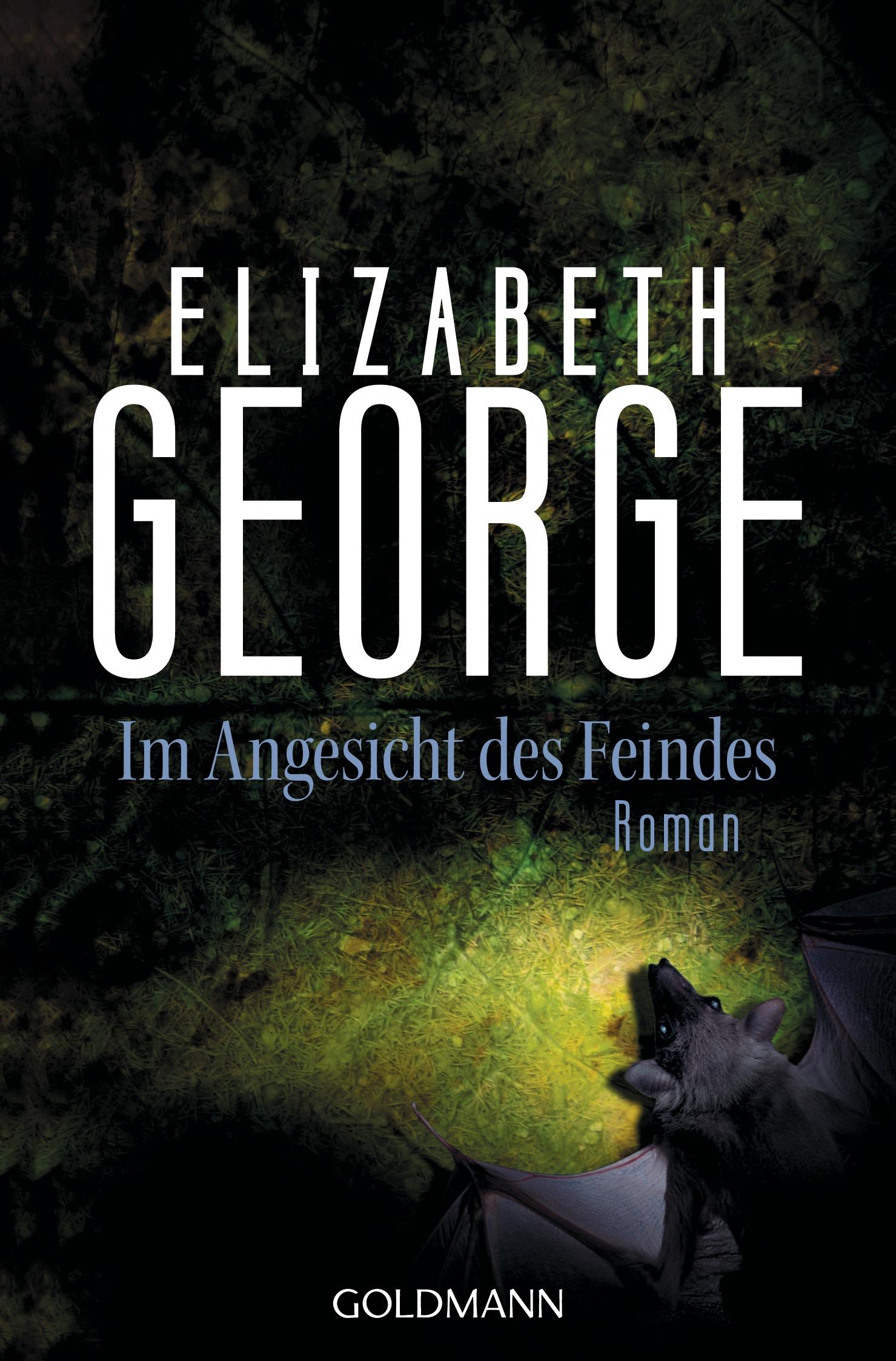 Im Angesicht des Feindes von Elizabeth George