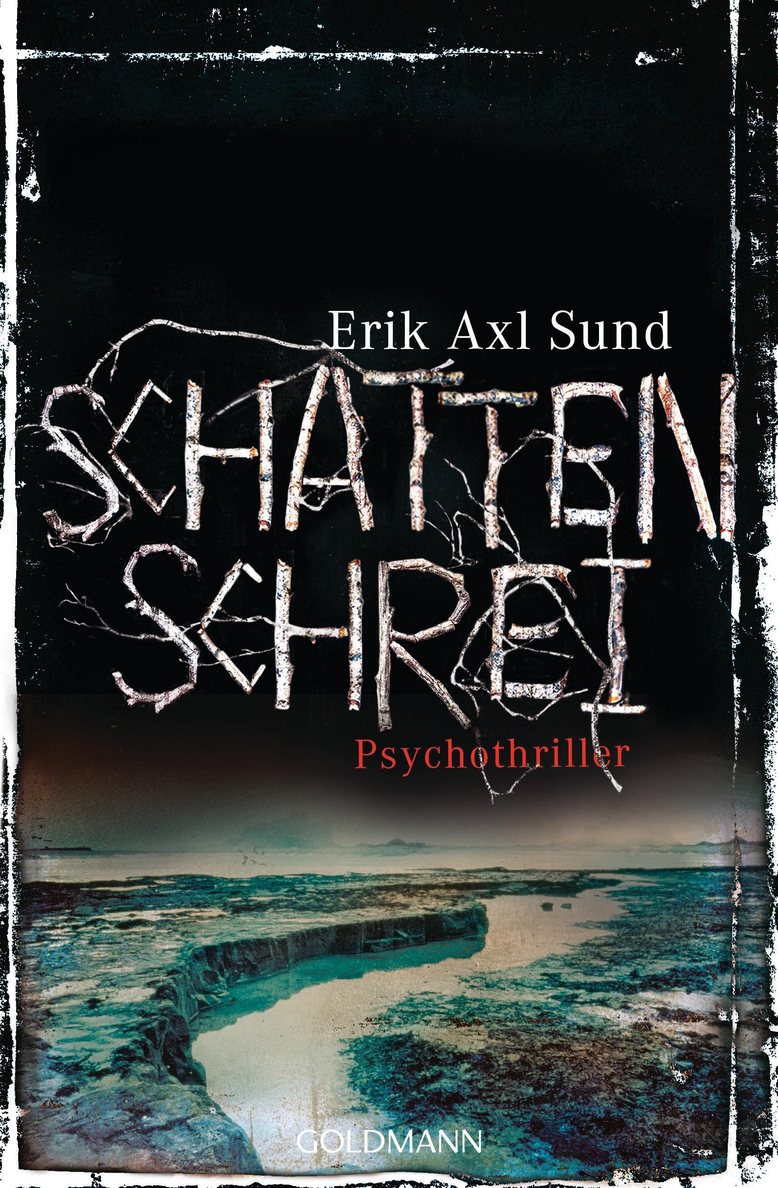 Schattenschrei von Erik Axl Sund