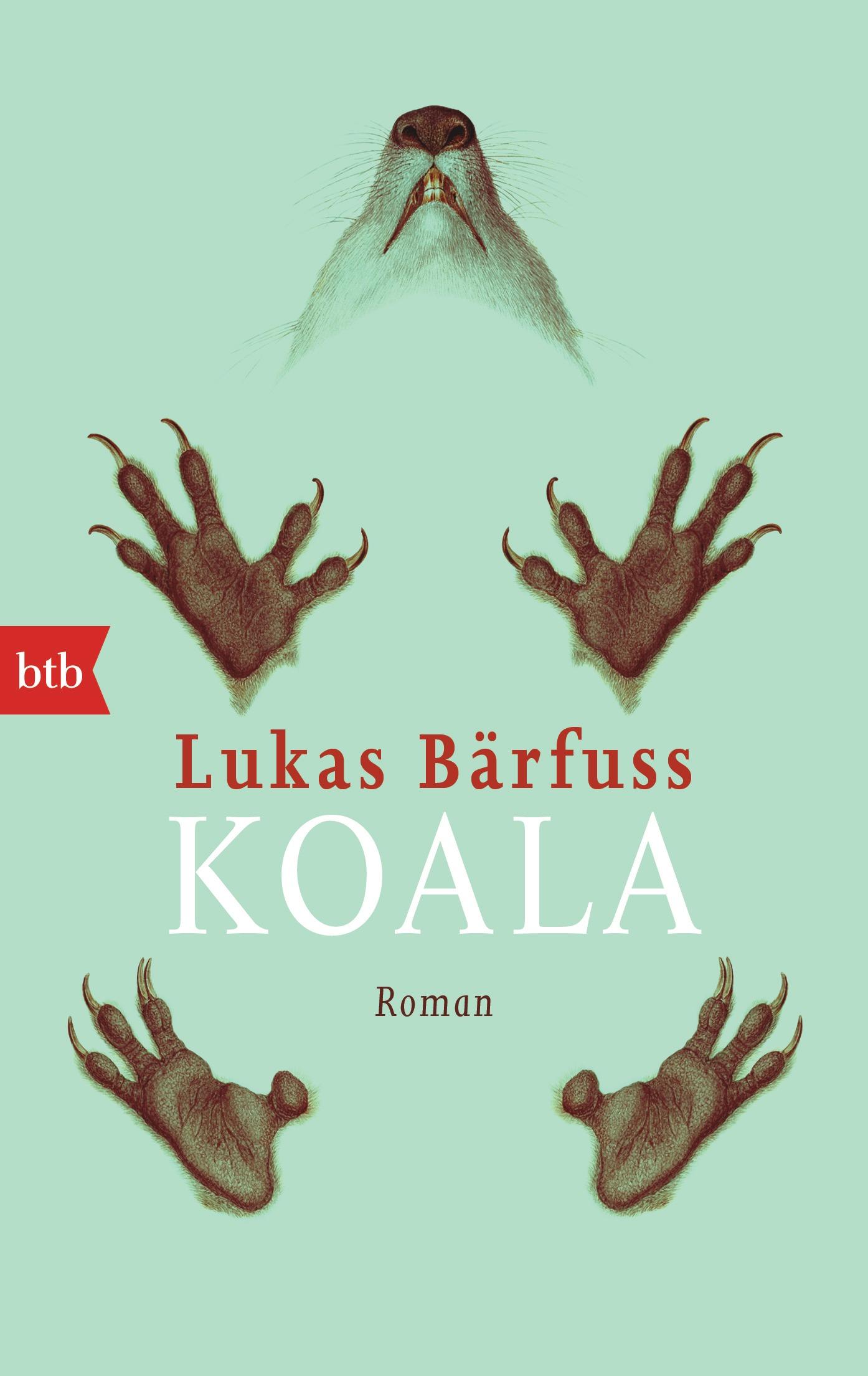 Koala von Lukas Baerfuss
