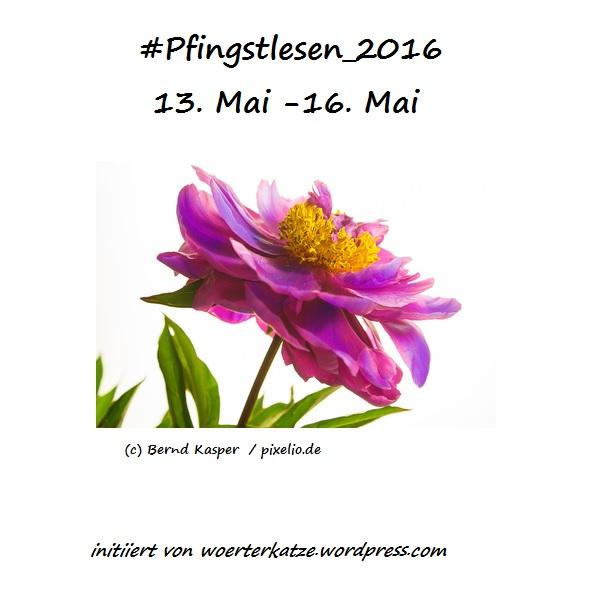 logo_pfingstlesen_2016